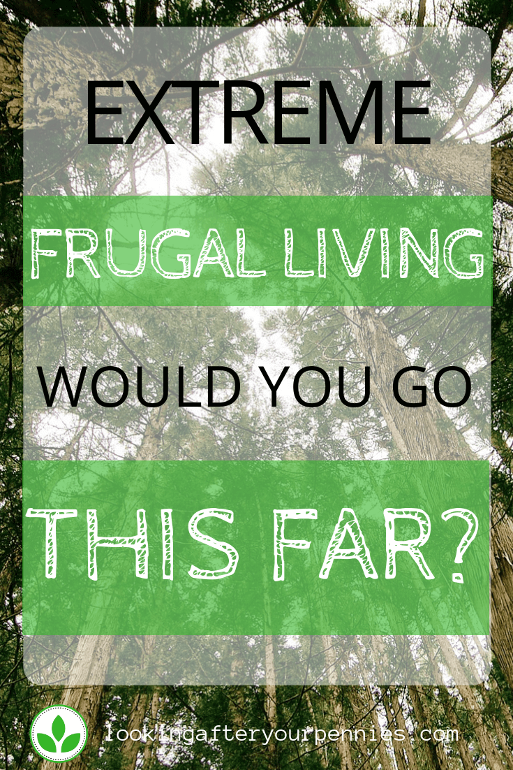 extreme frugal living 2019